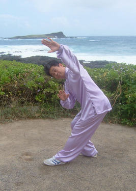 Dayan - Wild Goose Qigong Classes with Master Michael Tse