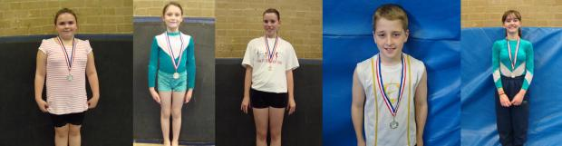 Redhill And Reigate Life: Springfit gymnasts display progress