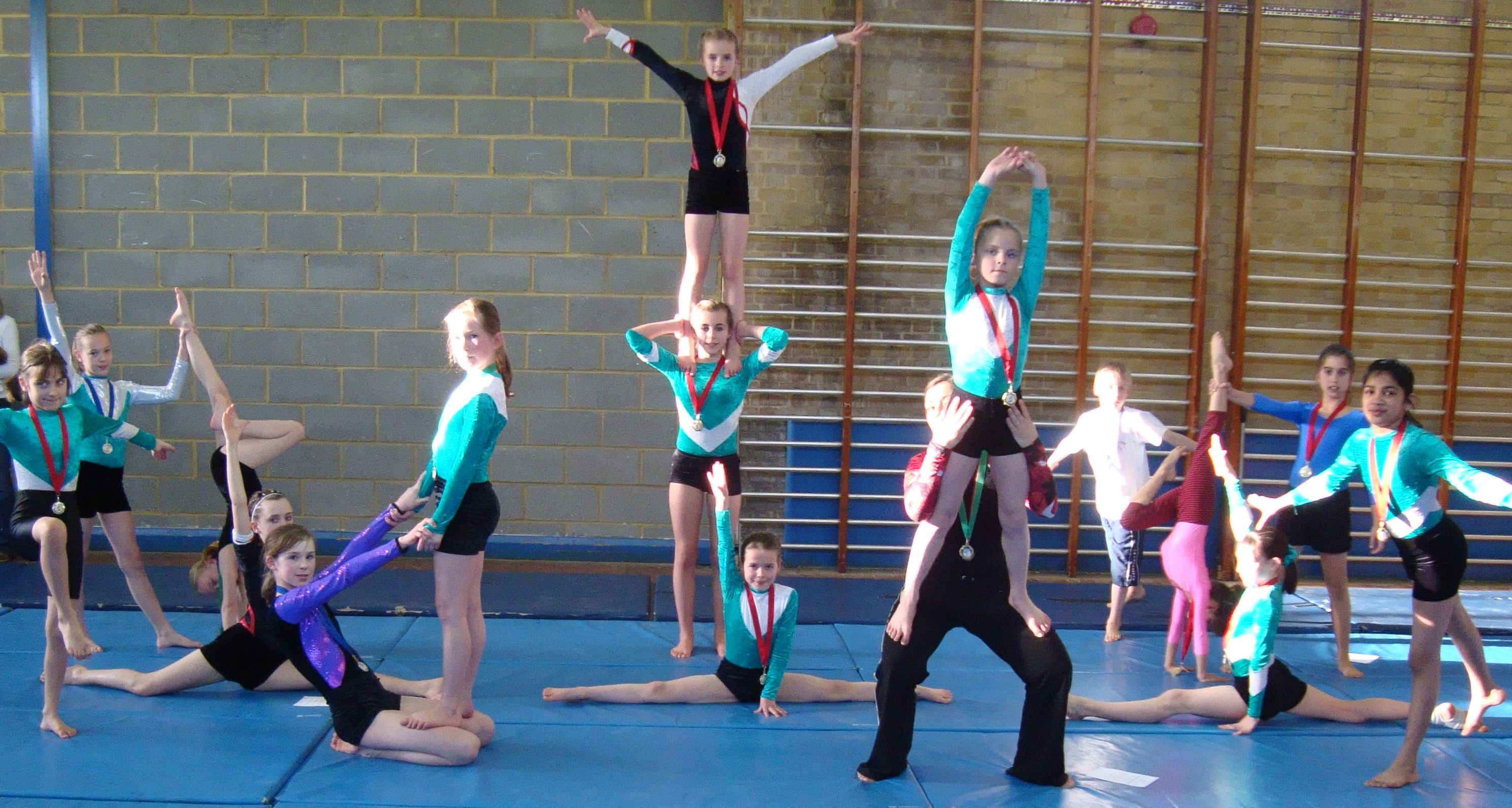 The gymnasts going through their paces